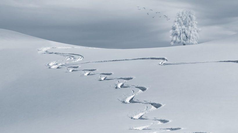 Università della tecnica di sci a Cervinia, ecco il primo appuntamento estivo